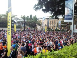 Sydney Half Marathon